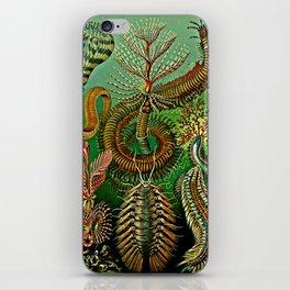 Chaetopoda iPhone Skin