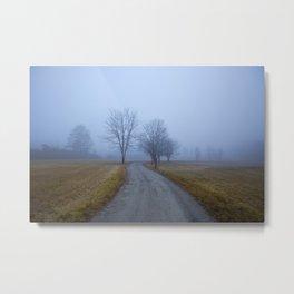 Trees Down a Hazy Road Metal Print