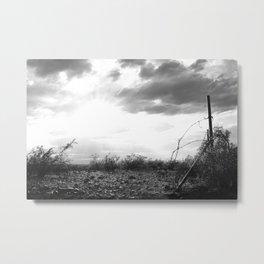 shiny Desert Metal Print