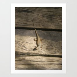SUNBAKING Art Print