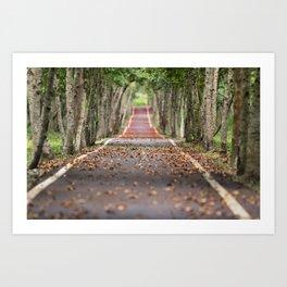 wood le chemin Art Print