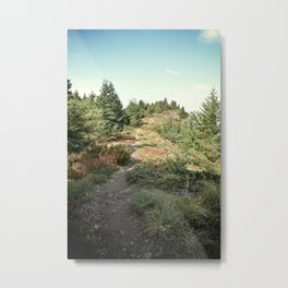 Cliff Trail Metal Print