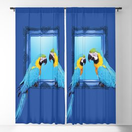 macaw Bird sitting on frame blue Blackout Curtain