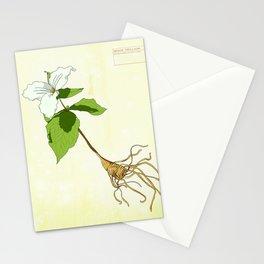 White Trillium Detail 2 Stationery Cards