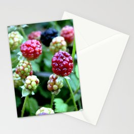 Not So Blackberries Stationery Cards