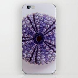 purple urchin I iPhone Skin