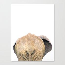 Elephant back Canvas Print