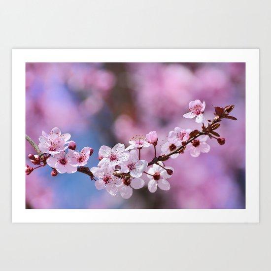 Pink...... Art Print