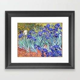 Vincent Van Gogh Irises Framed Art Print