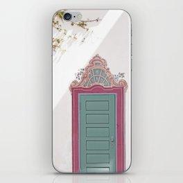 Decorative Door and Vines iPhone Skin