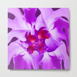 Abstract Orchid In Lavender Metal Print