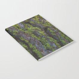 Musgo Notebook