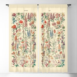 Vintage Floral Drawings // Fleurs by Adolphe Millot 19th Century Science Textbook Artwork Blackout Curtain