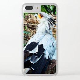 Secretary Bird Clear iPhone Case