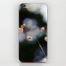 Field of Forgotten Dreams iPhone Skin
