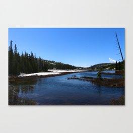 Snake River In June 2017 Canvas Print