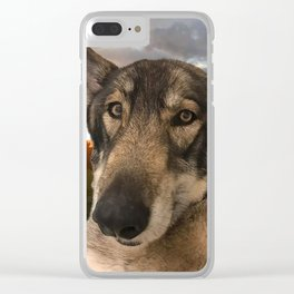 Dog German Shepherd and Sunset Clear iPhone Case