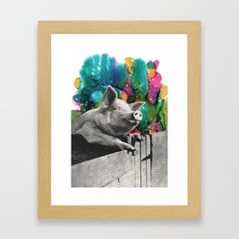 Happy to be Framed Art Print
