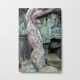 Snake Vine, Cambodia Metal Print