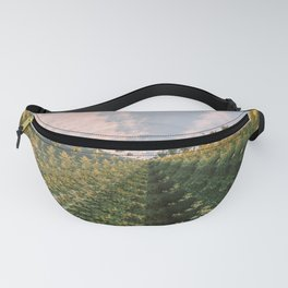 iterations i Fanny Pack