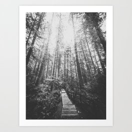 INTO THE WILD XIX Art Print