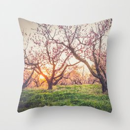 Dreamy Peach Orchard Throw Pillow