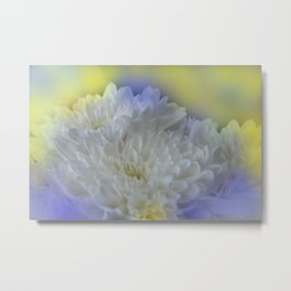 the beauty of a summerday -81- Metal Print