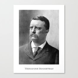 President Theodore Roosevelt Canvas Print