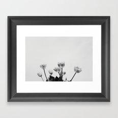Black & White Tulips Framed Art Print