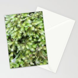 TEXTURES -- Moss on a Tree Trunk Stationery Cards