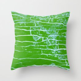 green stone Throw Pillow