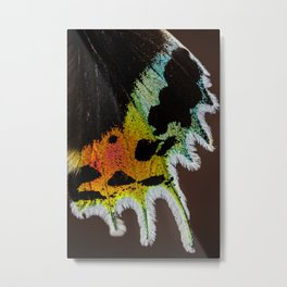 Wing of a Madagascan Sunset Moth, Shimmering with the Vivid Imagination of Nature Metal Print