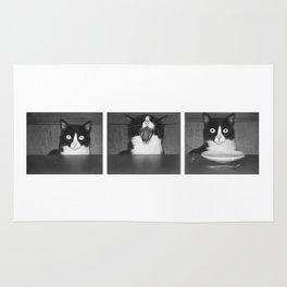 cat III Rug