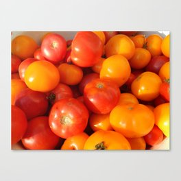 The food in the garden of fruits and vegetables Canvas Print