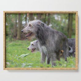 Wolfhounds big meek gray giants Serving Tray