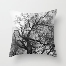 Old oak tree. Moscow district. Throw Pillow