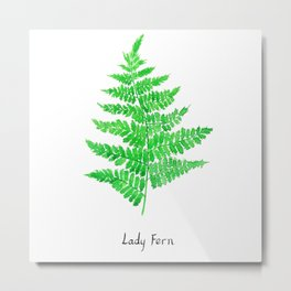 Lady fern Metal Print
