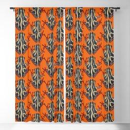 congo tree frog orange Blackout Curtain