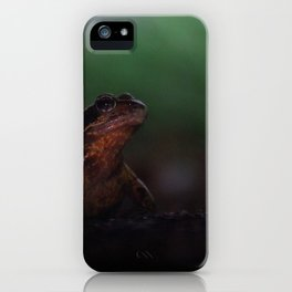 The Disappointment iPhone Case