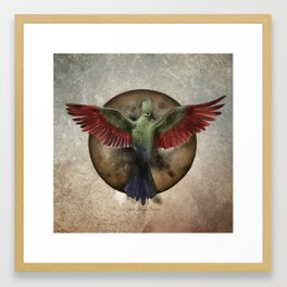 Loerie Rising Framed Art Print