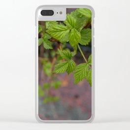 backyard Clear iPhone Case