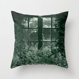 Cottage window vintage Throw Pillow