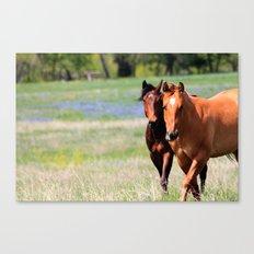 Horses & Bluebonnets II Canvas Print