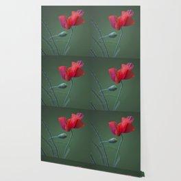 Red Poppy Dance #decor #society6 Wallpaper