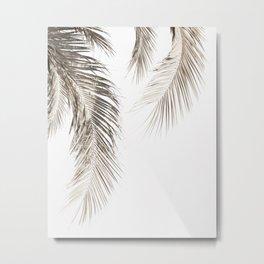 Dried Palm Leaves Metal Print