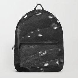 Shining Rain drops on a poinsettia leaf Backpack