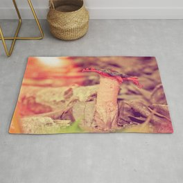 Poetry on the forest floor - landscape and macro photography Rug
