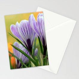 Krokuswiese  Stationery Cards