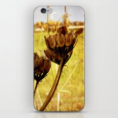 End of summer is near iPhone & iPod Skin