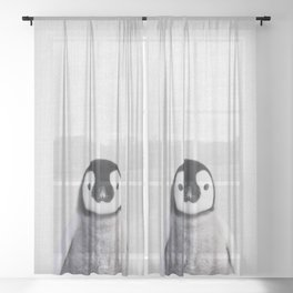 Baby Penguin - Colorful Sheer Curtain